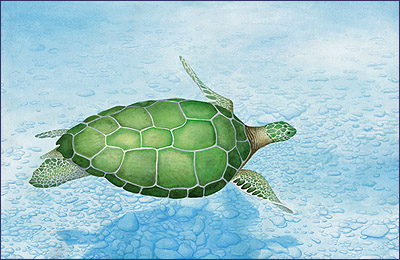 Ocean's Emerald - painting of sea turtle